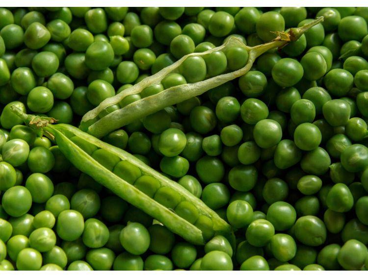 Открытка - Зеленый горошек №1288
