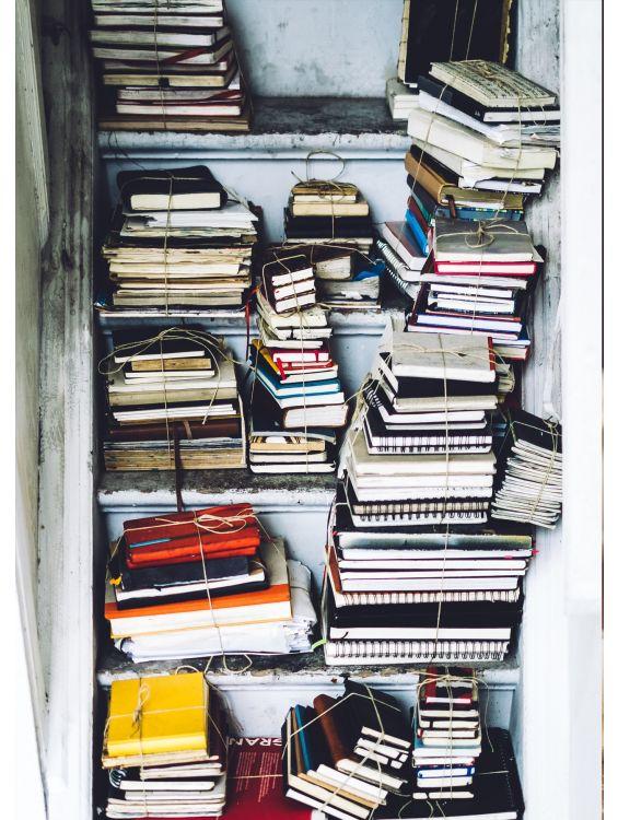 Открытка - Книжки на полках №1292