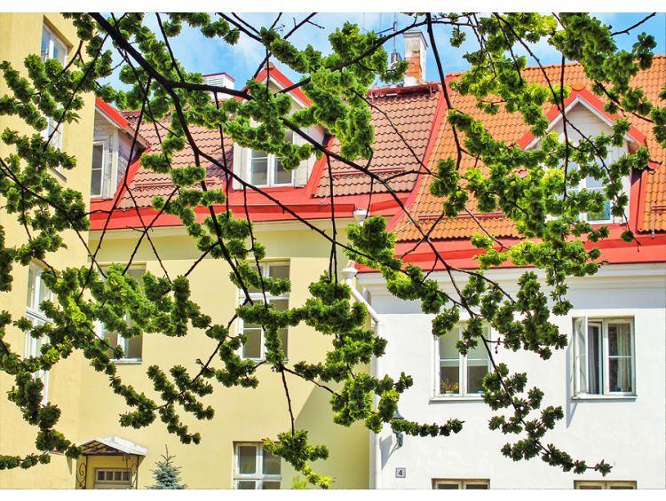 Открытка - Весна в городе №1119