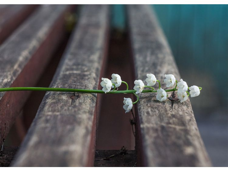 Открытка - Весна прощай! №1120