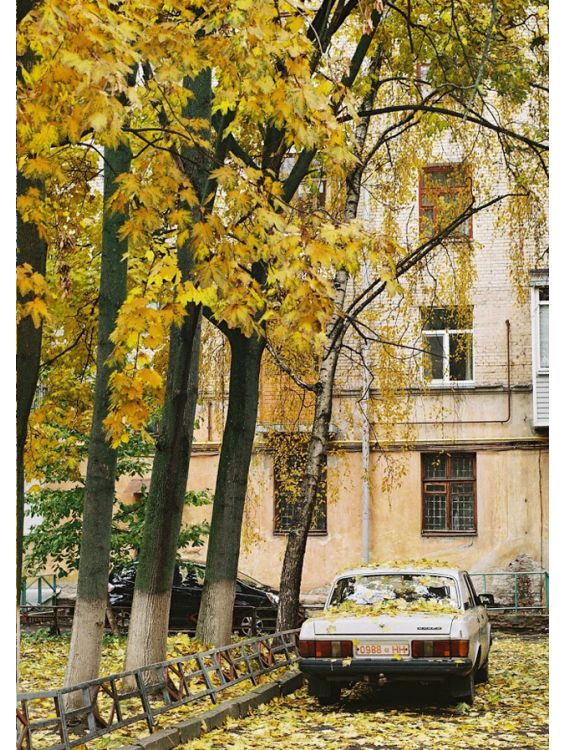 Открытка - Осень во дворе №1155