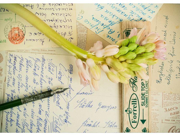 Открытка - Письма и цветок №1172