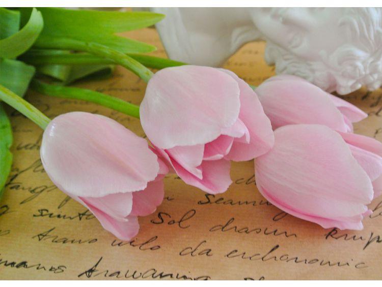 Открытка - Тюльпаны №1173