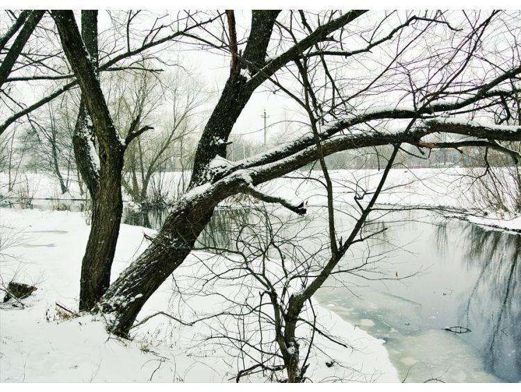 Открытка - Река зимой №1183