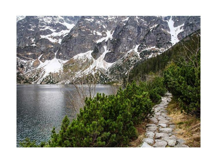 Открытка - Тропинка в горы №979